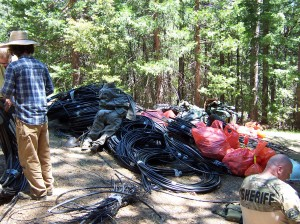 national forest cleanup 1